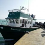 Boat trips to the Off-Islands from the quay only 7 minutes walk from No2